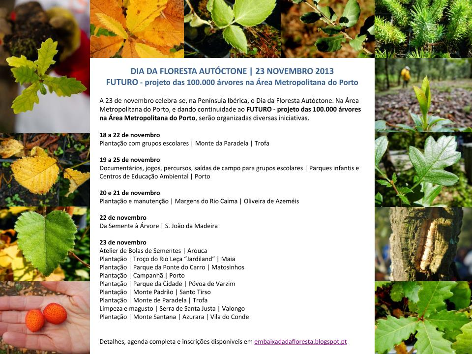 FlorestaAutoctone 23-nov-2013